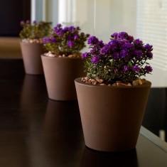 Blumenvase CONO, konisch