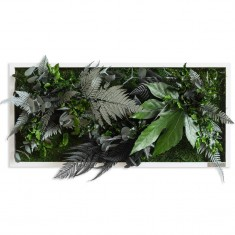 Pflanzenbild rechteckig Pflanzeninsel styleGreen
