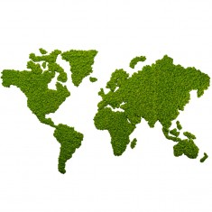 Weltkarte aus Islandmoos von styleGreen